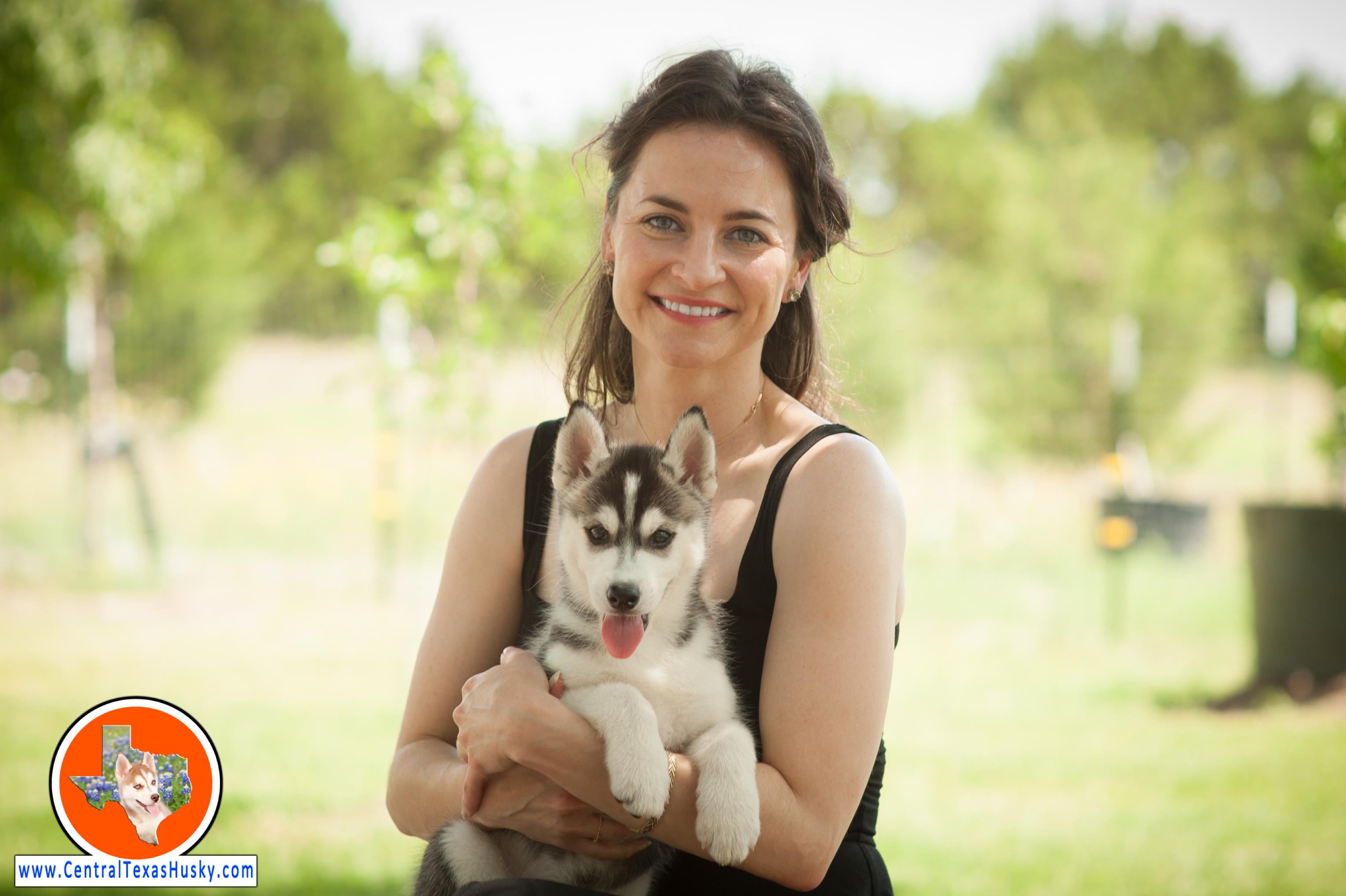 central-texas-husky_austin-siberian-husky-breeder_705763_20180525