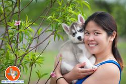 central-texas-husky_austin-siberian-husky-breeder_704292_20180402