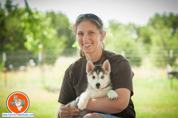 central-texas-husky_austin-siberian-husky-breeder_705891_20180527