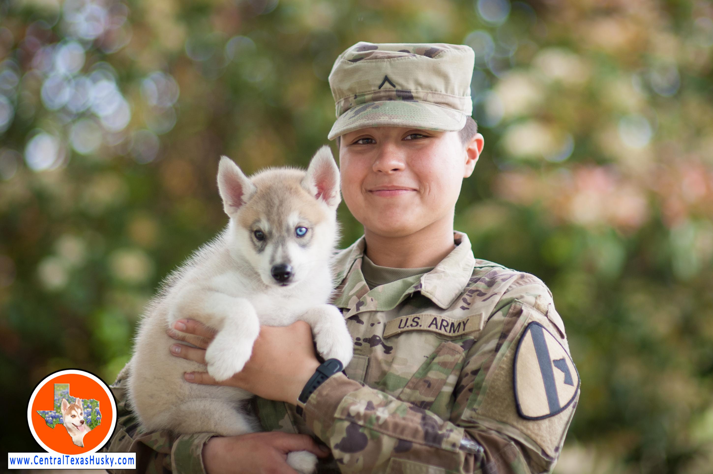central-texas-husky_austin-siberian-husky-breeder_704378_20180406