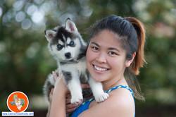 central-texas-husky_austin-siberian-husky-breeder_704335_20180406