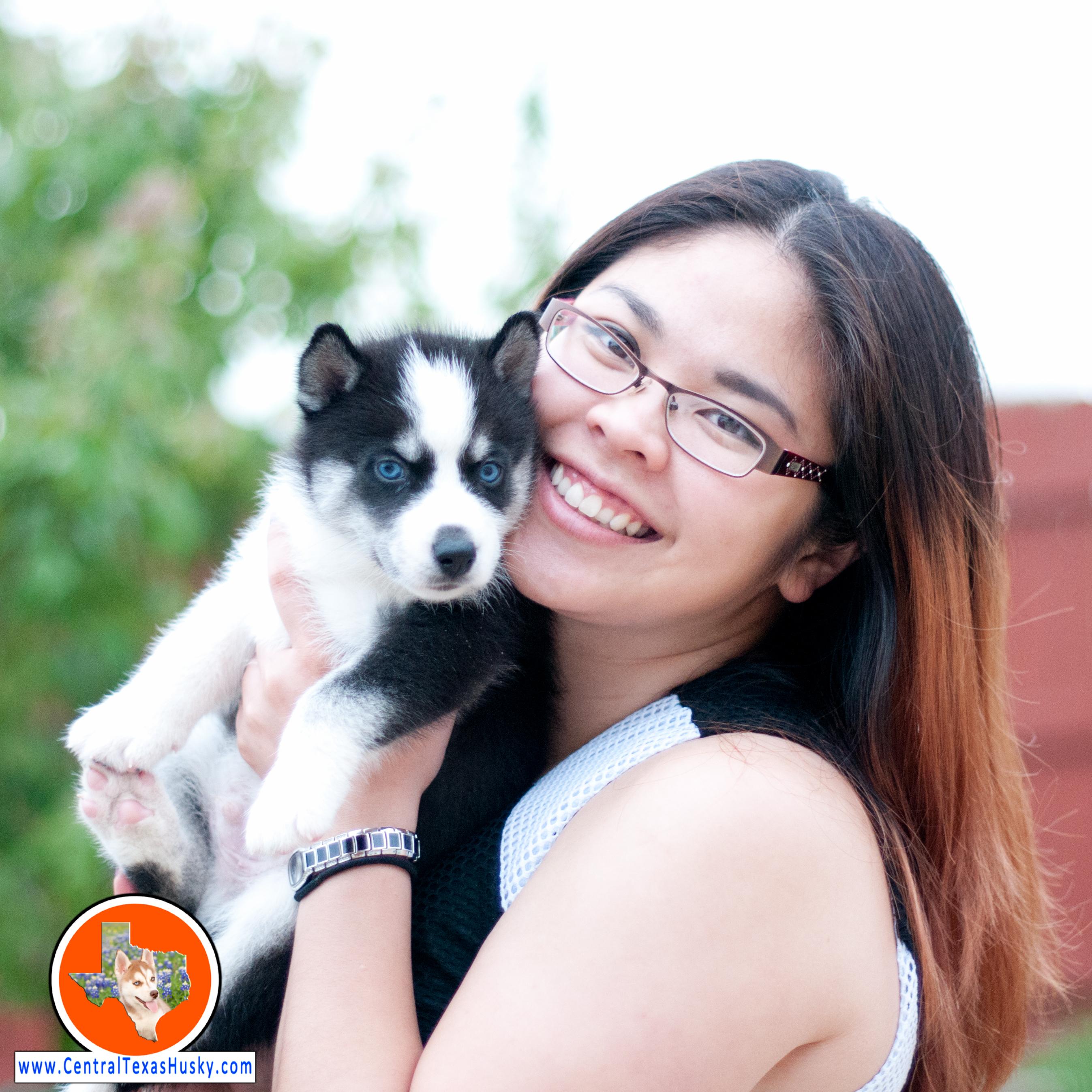 central-texas-husky_austin-siberian-husky-breeder_5181_20160410