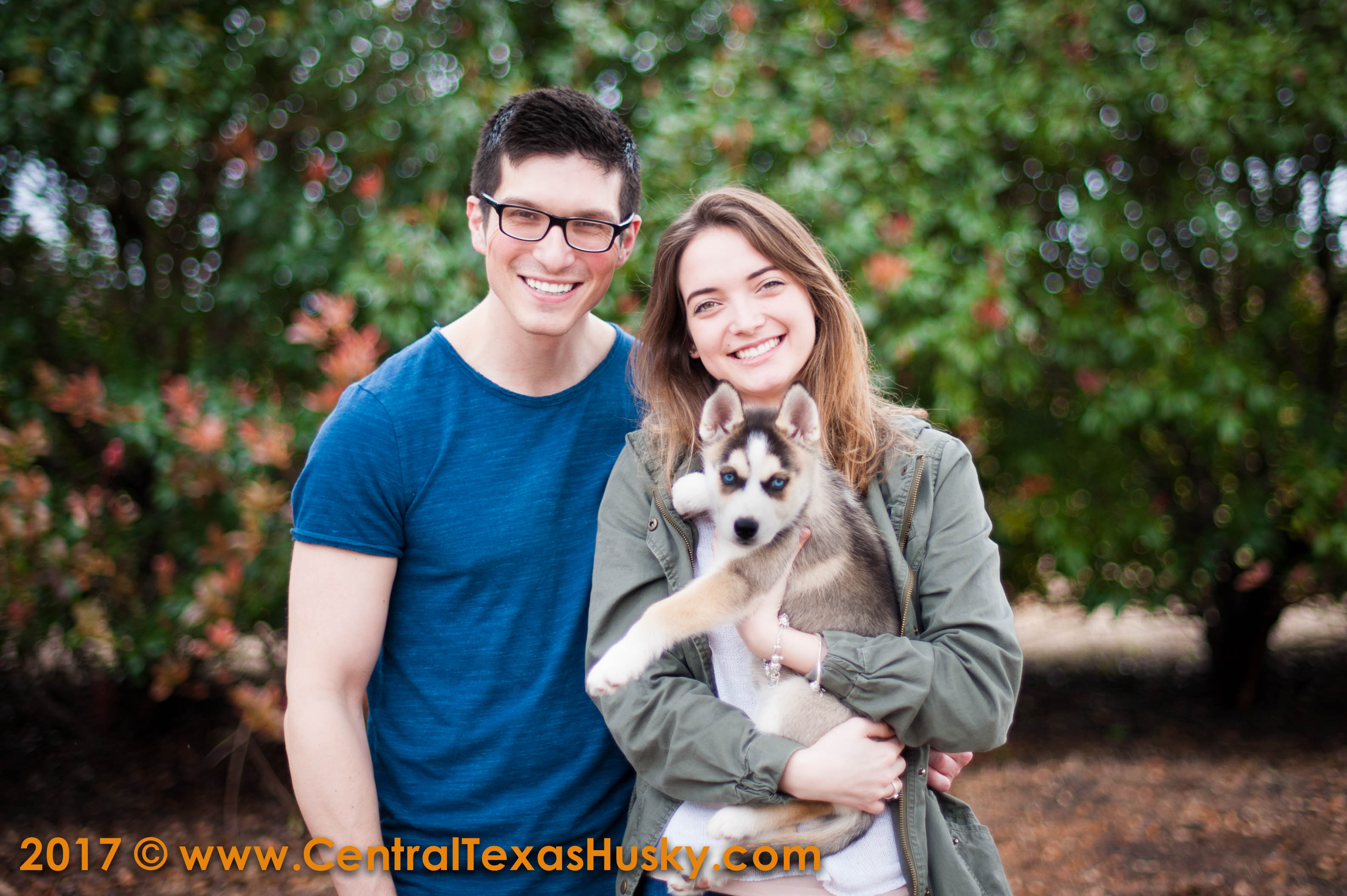 centraltexashusky_texas-husky-breeder_708442_20170311