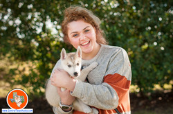 central-texas-husky_austin-siberian-husky-breeder_7714_20171020