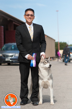 central-texas-husky_austin-siberian-husky-breeder_702225_20171028