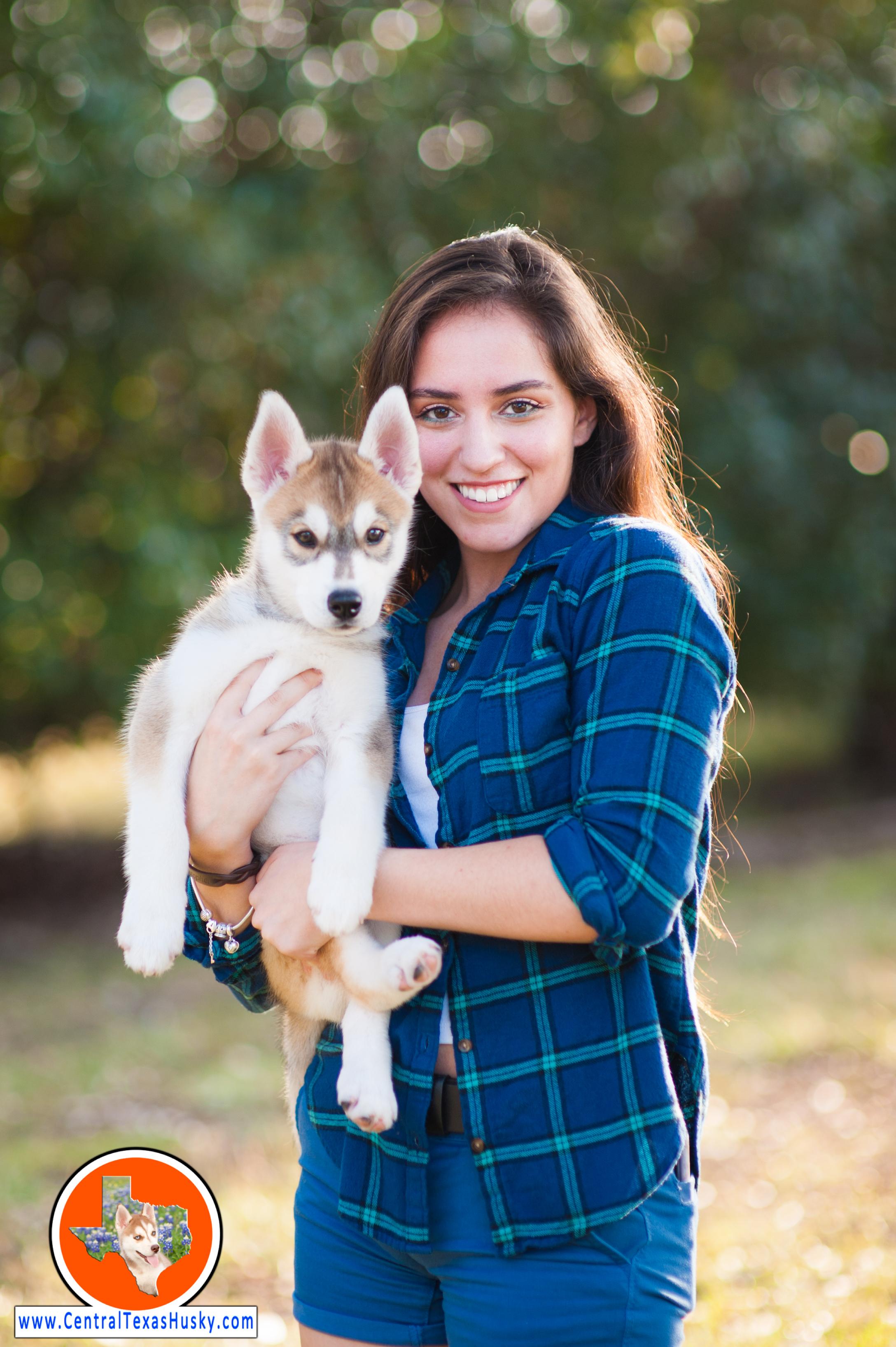 central-texas-husky_austin-siberian-husky-breeder_702621_20171104