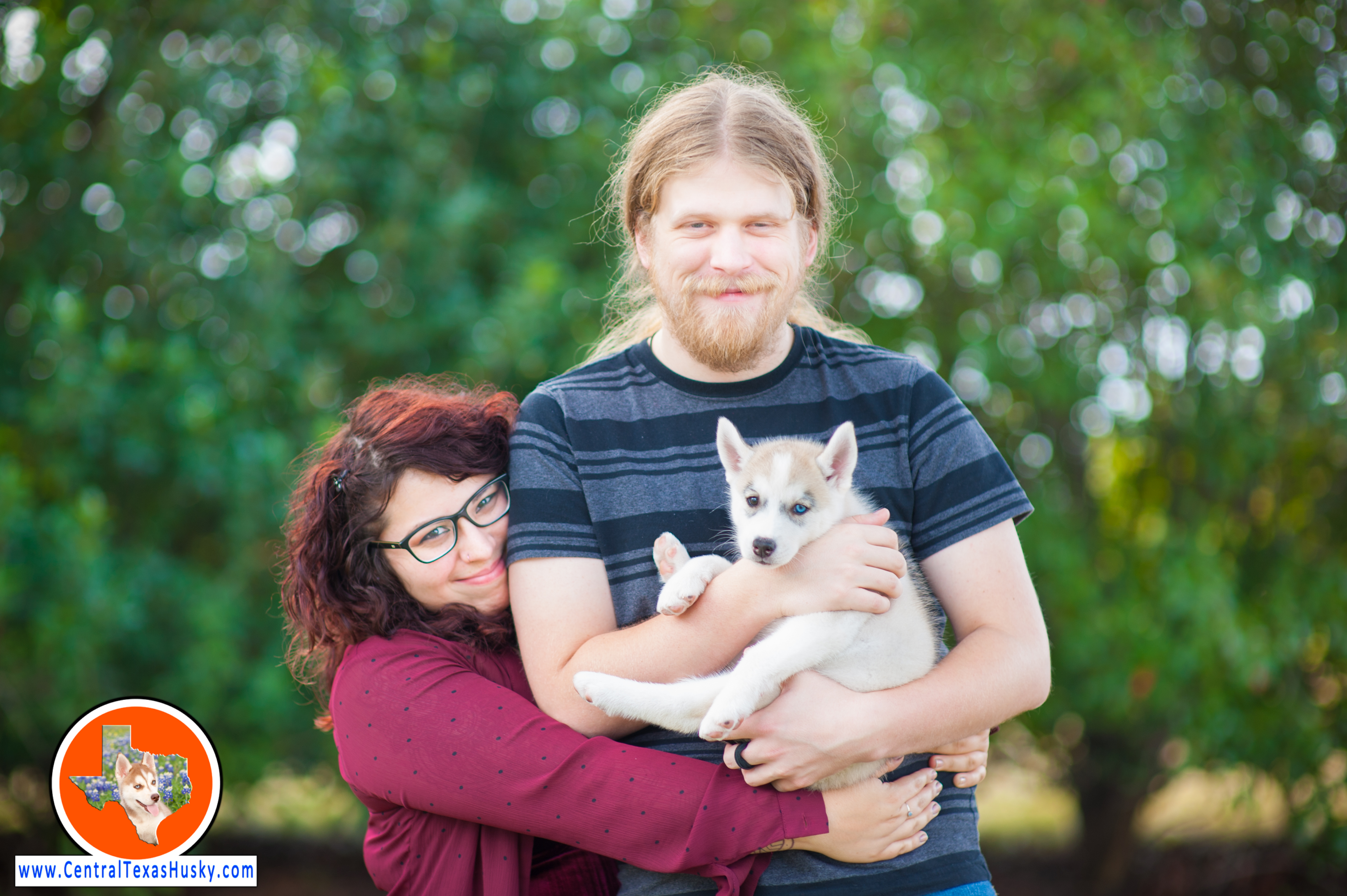 central-texas-husky_austin-siberian-husky-breeder_702542_20171103