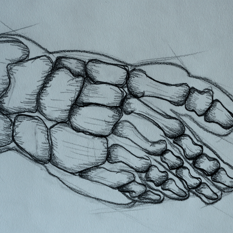 Detail: Foot