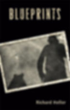 Heller Book Cover Blueprints Screen Shot
