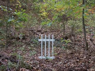 Solitary Fence in New York.jpg