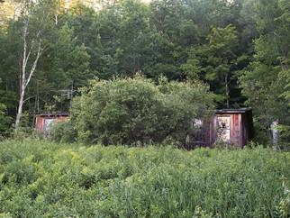 House Hidden by Growth Vermont.jpg