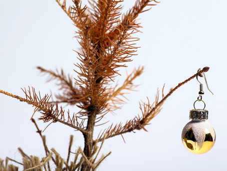 Ways to Sustainably Recycle your Christmas Tree