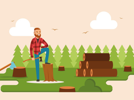 Firewood and Logs: Top Tips