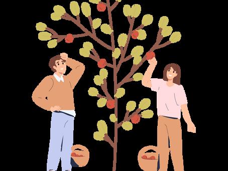 Commemorative Tree Planting: A Milestone Celebration