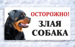 15 x 30_sobaka_1