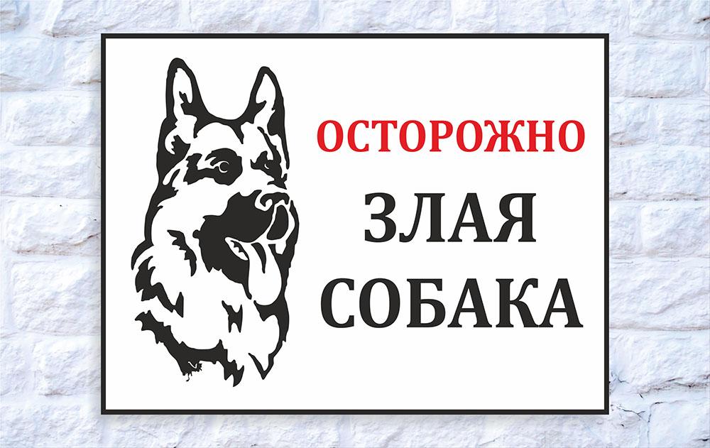 zlayz_30 x 40_1