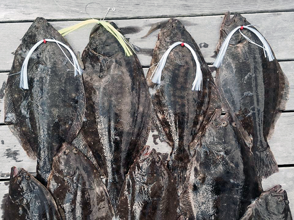 Flounder day