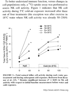 Cold exposure triples immune system activity.