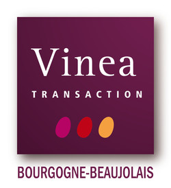 petit logo vinea Bourgogne Beaujolais co