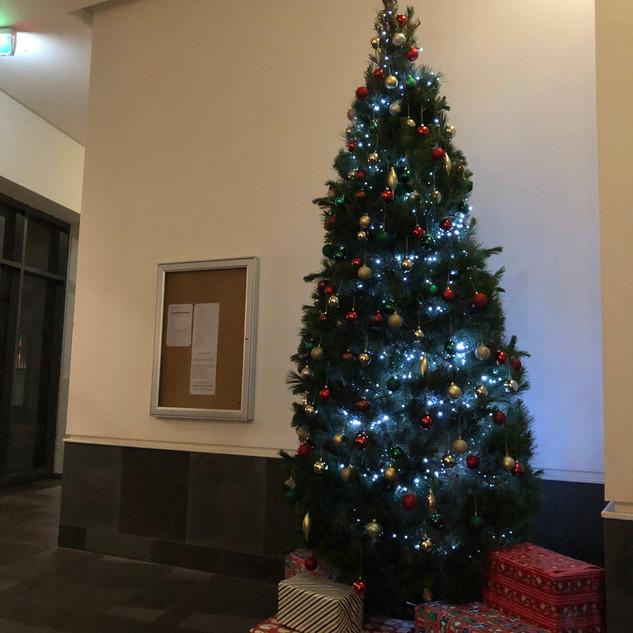 Foyer - Live Christmas Tree 2018