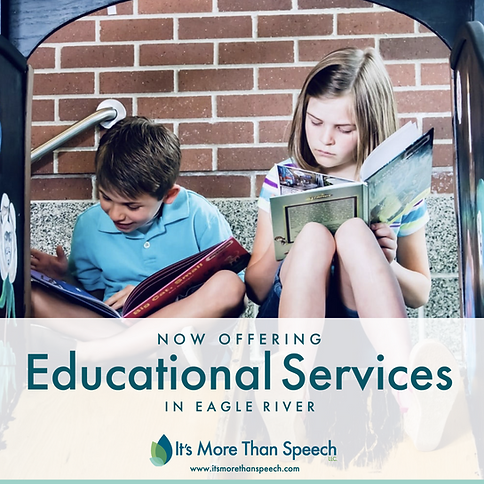 Educational Services | It's More Than Speech