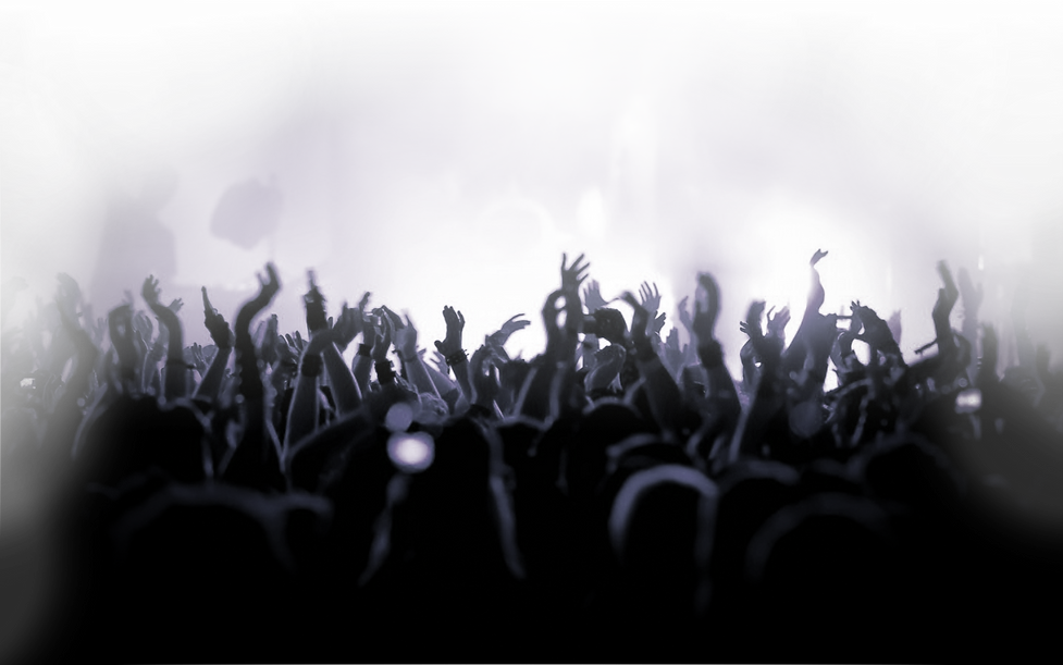 concert_crowd.png