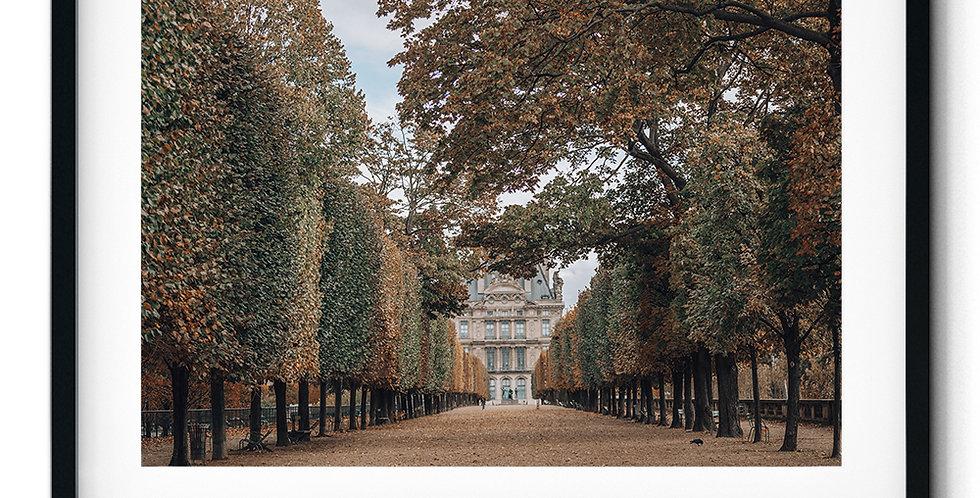Autumn in Tuileries Garden