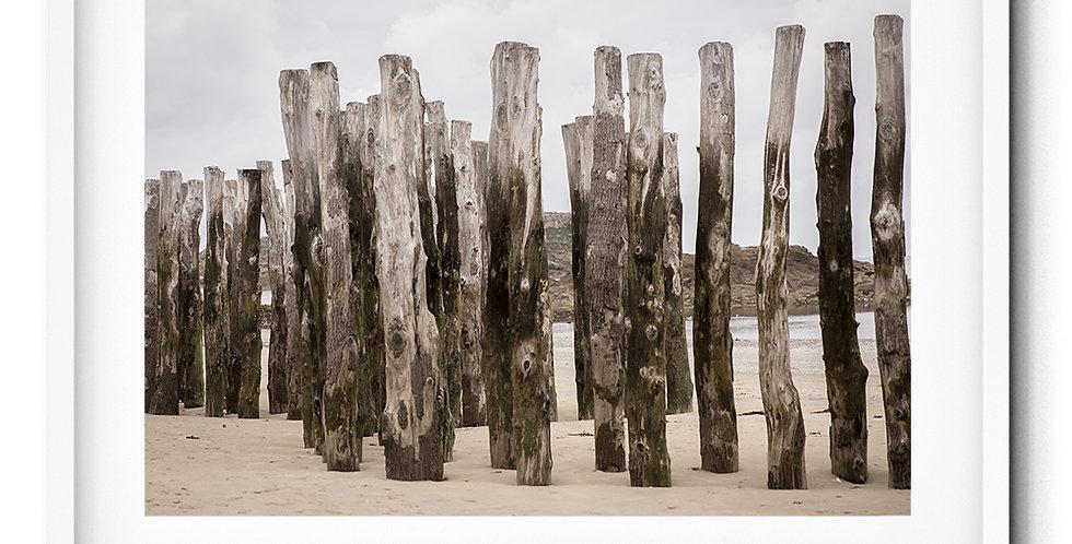 Saint Malo wood
