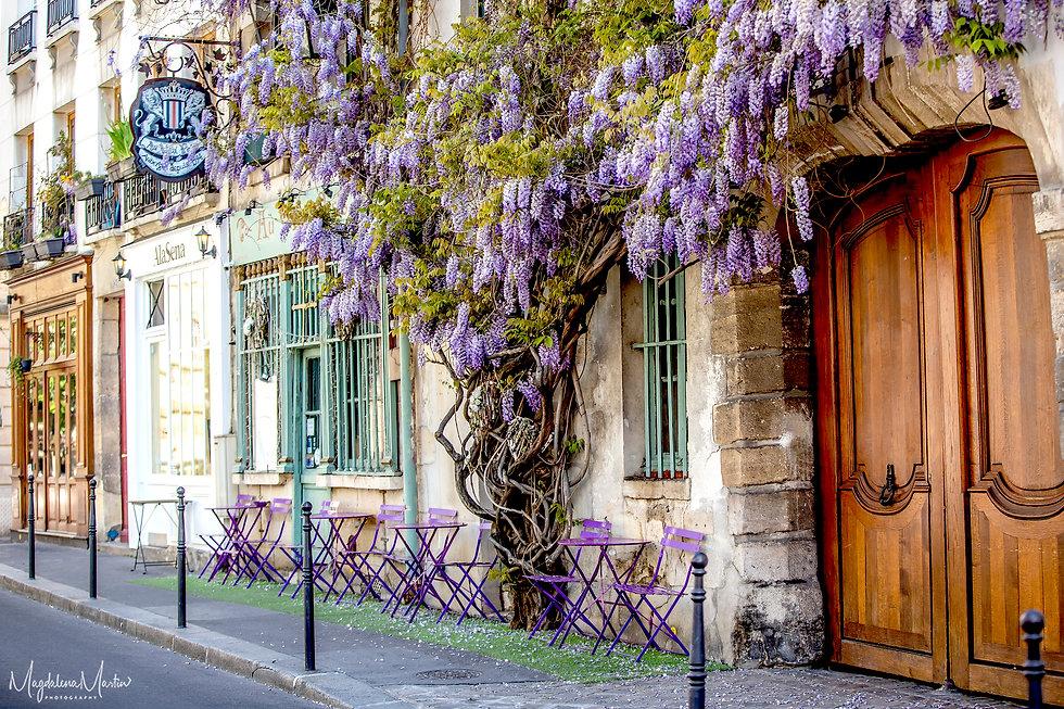 Au vieux Paris-0793.jpg