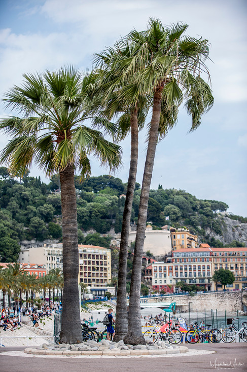 French Riviera-6429.jpg