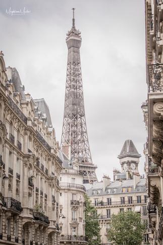 Paris-6323 logo.jpg