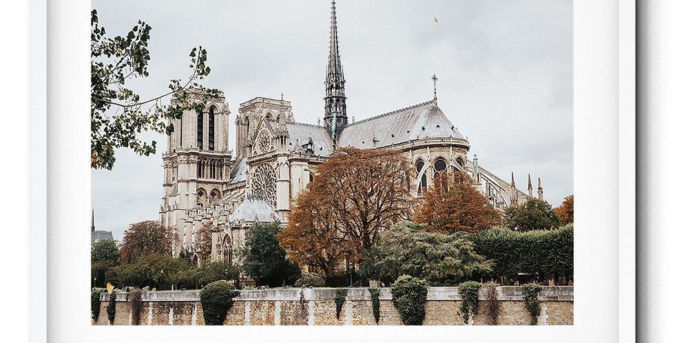 Notre Dame autumn