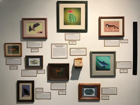 Endangered Species Gallery Show