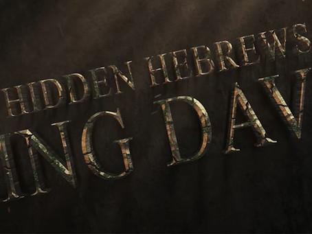 Hidden Hebrews - King David by Benayah Israel