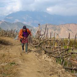 In Thulo Syabru - Langtang National Park - Rasuwa district