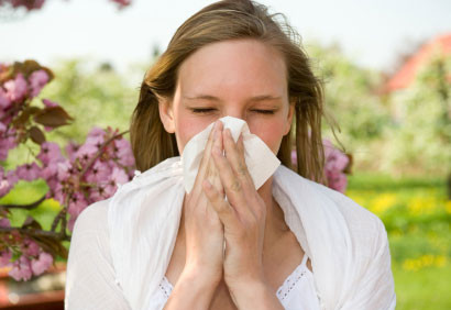 Relief for hayfever, sinus pain and lingering coughs