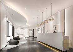 Luxury Office Reception