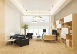 Luxury Office - CEO