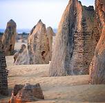 Pinnacles - ACC - Nambung National Park