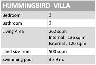 hummingbird details.png