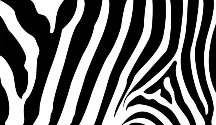 zebra_stripes__eps_vector_sjpg2124.jpg