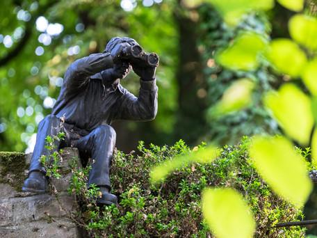 Stalking em Portugal : Qual a proteção da vítima?