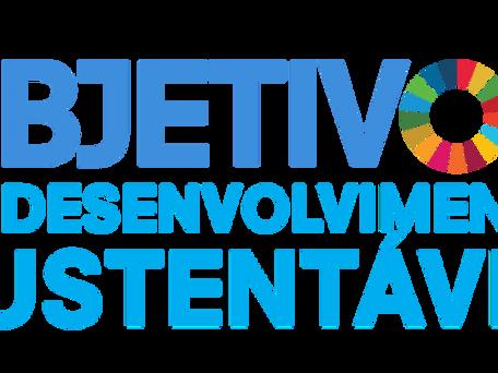 Agenda 2030: Parcerias para um mundo sustentável?