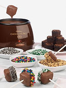 Electric Chocolate Melter Rental