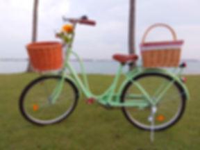 Vintage Mint Bicycle Rental