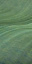 tapet textil verde .jpg