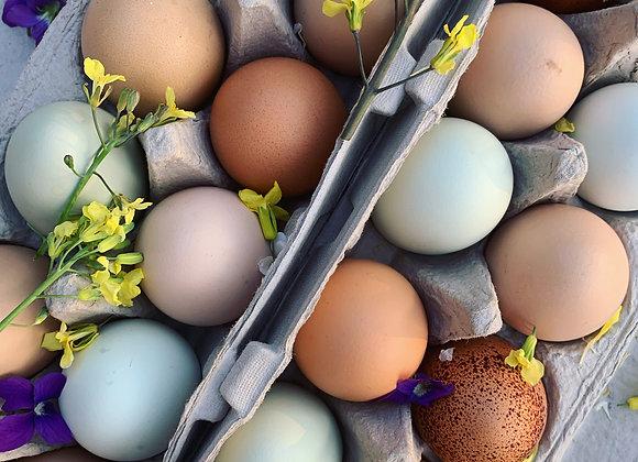 Heritage Chicken Eggs, Organic