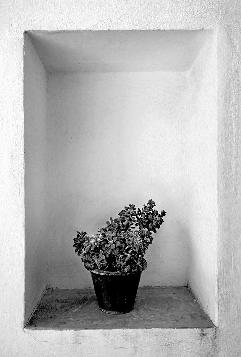 'Framed' by Leonard Ferguson (8 marks)  -  Ballymoney Amateur Photographic Club