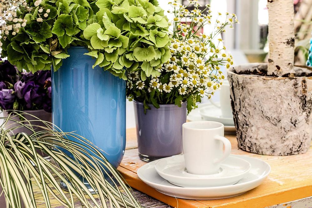 Blumenschauhalle Landesgartenschau Apolda