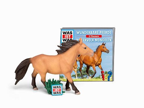 Was ist was - Wunderbare Pferde/Reitervolk Monoglen